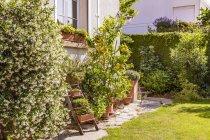 Allemagne, Stuttgart, plantes en pot devant la maison — Photo de stock
