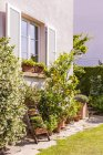 Germany, Stuttgart, potted plants in front of house — Stock Photo
