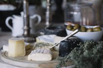 Cheese selection on buffet of luxury brunch — Stock Photo