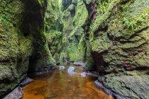Великобритания, Шотландия, Национальный парк Троссакс, каньон Финнич-Глен, Пульпит Дьявола, Ожог реки Карнок — стоковое фото