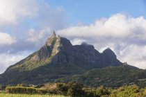 Mauritius, Highlands, sugarcane fields, Mountain Pieter Both — Stock Photo