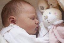 Schlafendes Baby Mädchen mit Spielzeughase — Stockfoto