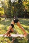 Подходящая молодая женщина практикует йогу в парке — стоковое фото