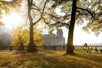 Германия, Баден-Вюртемберг, Гейдельберг, Гейдельбергский замок, дворцовый сад осенью — стоковое фото