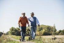 De vieux amis se promènent dans les champs avec un bâton de marche et un marcheur à roues, parlant du bon vieux temps — Photo de stock