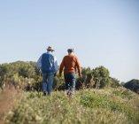 Dos viejos amigos dando un paseo por los campos, hablando de los viejos tiempos - foto de stock