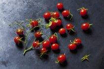 Tomates de grosella en tierra oscura - foto de stock