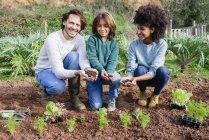 Piantagione famiglia piantine di lattuga in orto, mostrando le mani, pieno di terra — Foto stock