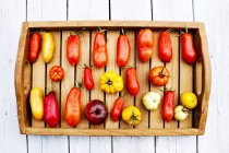 Tray with various tomatoes, stage of ripeness, overripe, ripe, rotten, mouldy — Stock Photo