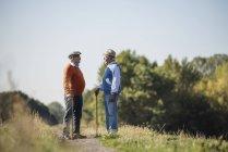 Deux vieux amis debout dans les champs, parlant du bon vieux temps — Photo de stock