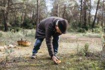 Старший чоловік знайшов у лісі гриб. — стокове фото