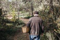 Homem sênior procurando cogumelos na floresta — Fotografia de Stock