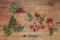 Roseships onon fundo de madeira — Fotografia de Stock