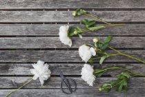 Peonie e forbici bianche sul tavolo da giardino — Foto stock