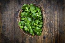 Lamb's lettuce in wickerbasket — Stock Photo