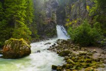 Italy, Trentino, Alto Adige, Aurina Valley, Campo Tures, Riva waterfalls in Summer — стоковое фото