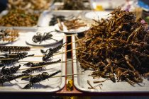 Thailand, Bangkok, insects for sale on a market — Stock Photo