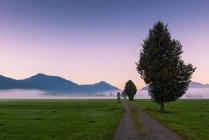 Alemania, Baviera, Alta Baviera, cerca de Benediktbeuern, estado de ánimo matutino - foto de stock