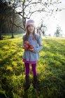 Retrato de menina sorridente em pé em um prado com maçãs coletadas no outono — Fotografia de Stock