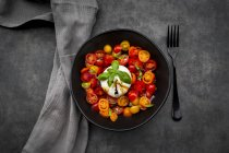 Bowl of tomato salad with burrata — стоковое фото