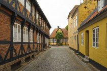 Denmark, Jutland, Ribe, picturesque alley with timber-framed houses — Stock Photo