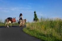 Una joven con un perro en las montañas - foto de stock