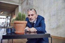 Старший бізнесмен сидить в офісі і спостерігає за зростом кактусів. — стокове фото