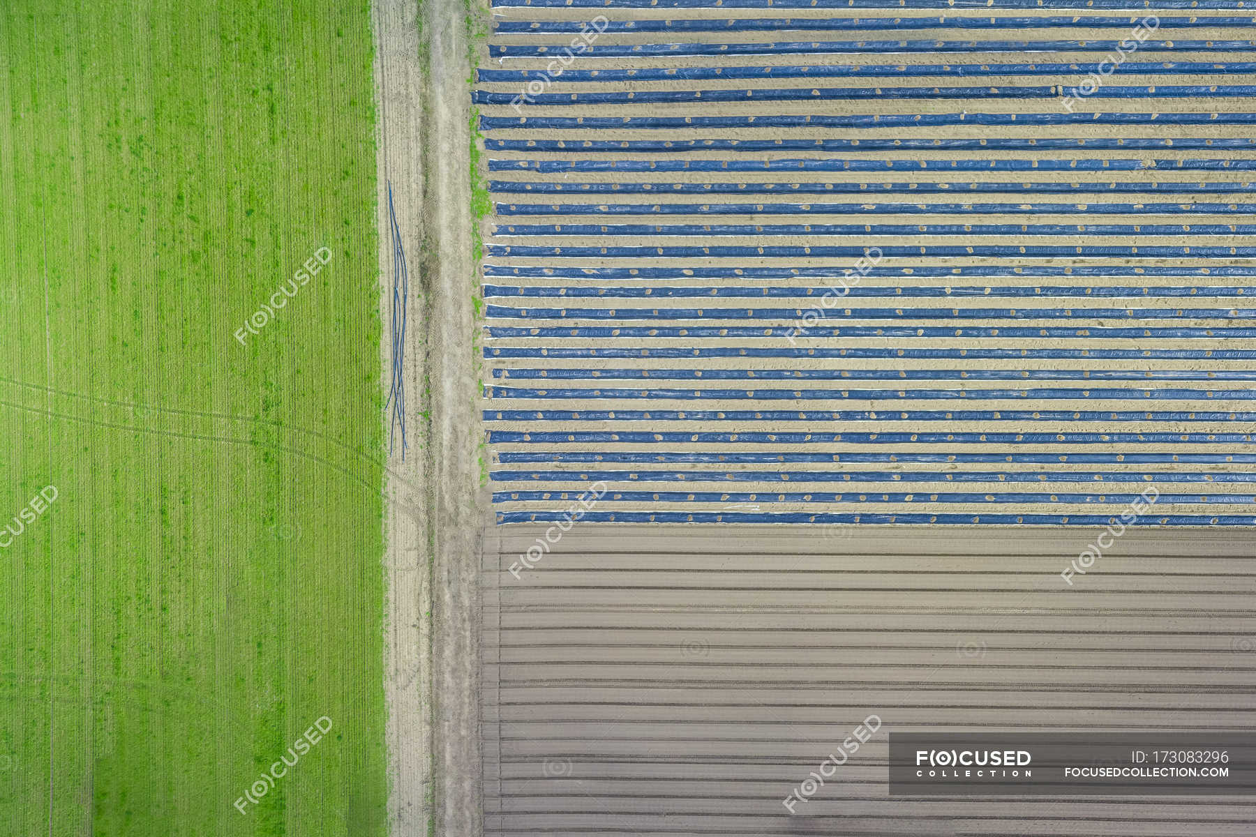 grass field aerial. Aerial View Of Green Grass And Field During Daytime \u2014 Stock Photo | #173083296 N