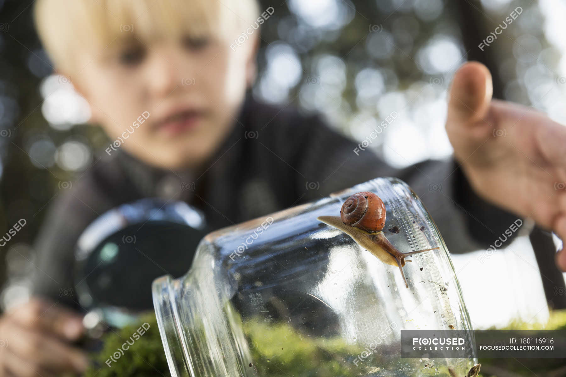 snail on a glass with little boy in the background — stock photo