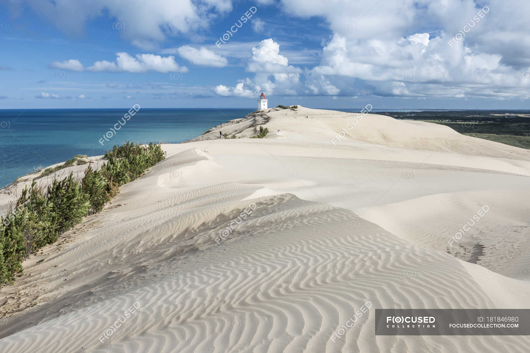 Denmark Beach Dunes And Seascape With Lighthouse On Background Sky Tranquility Stock Photo 181846980