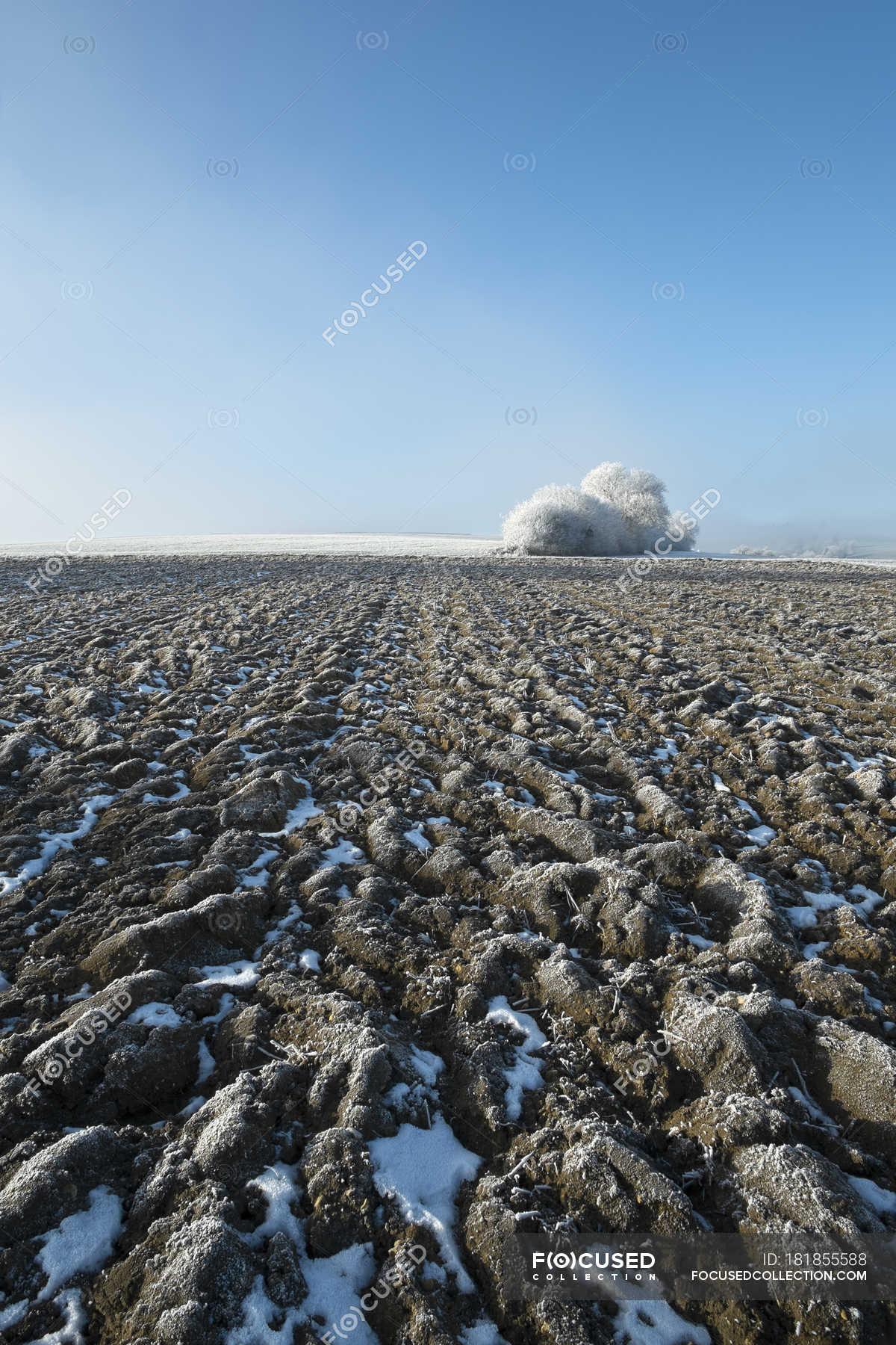Germany, Baden-Wuerttemberg, Tuttlingen, frozen soil during