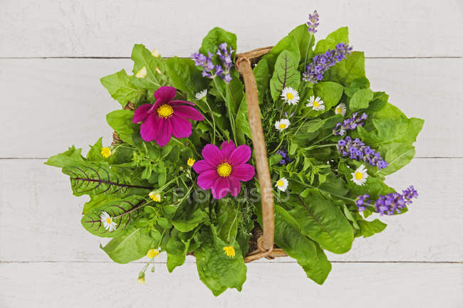 Close up of Edible flowers, leaves and herbs in wickerbasket — Stock Photo