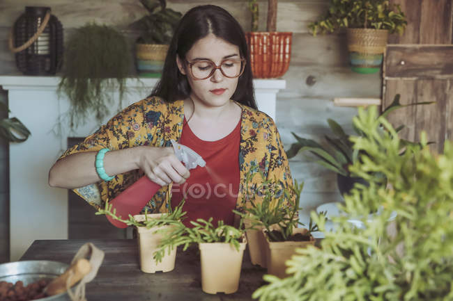 Woman planting cactuses — Stock Photo