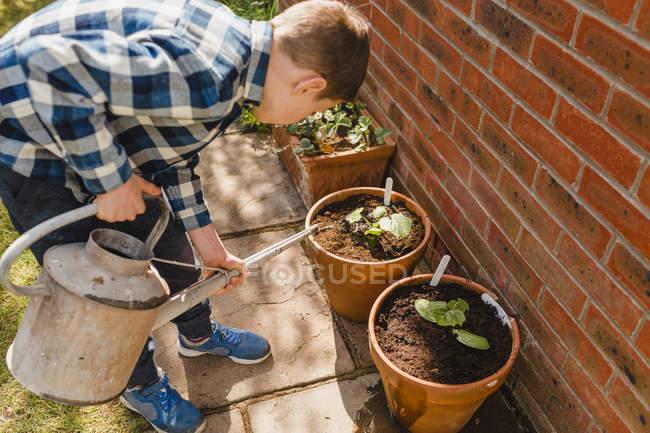 Boy watering seedling — Stock Photo