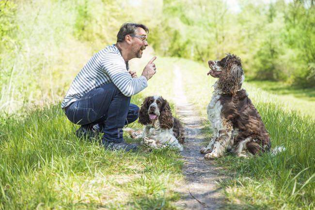 Человек тренирует двух собак на улице — стоковое фото