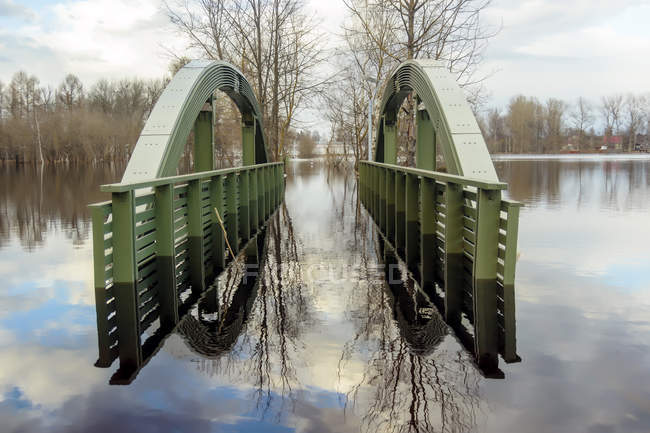 Flooded bridge at pond, trees on shore — Stock Photo