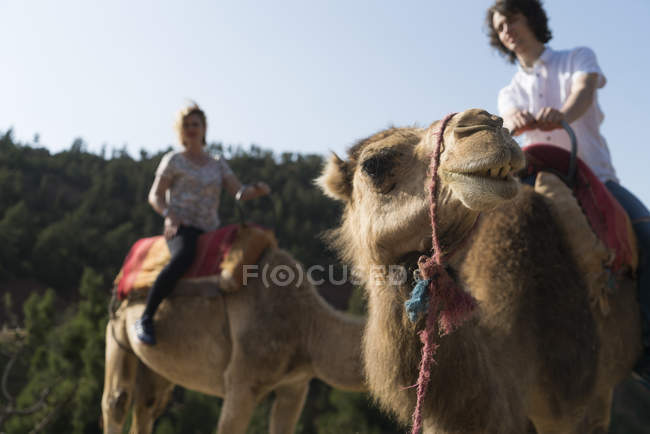 Marokko, Mann und Frau Kamelreiten — Stockfoto