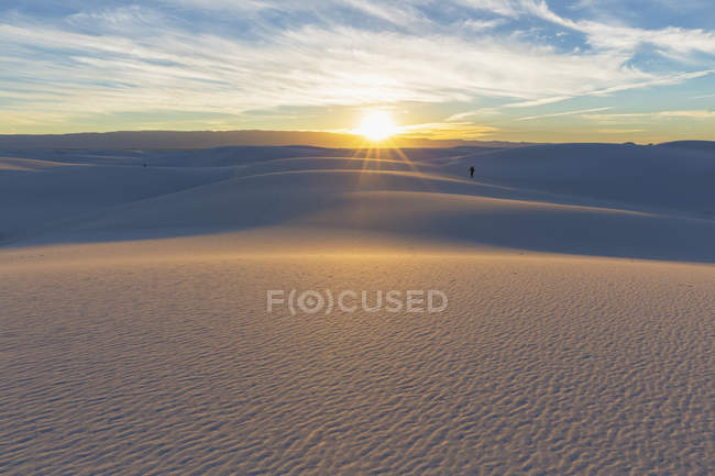 Chihuahua Desert natural landscape — Stock Photo