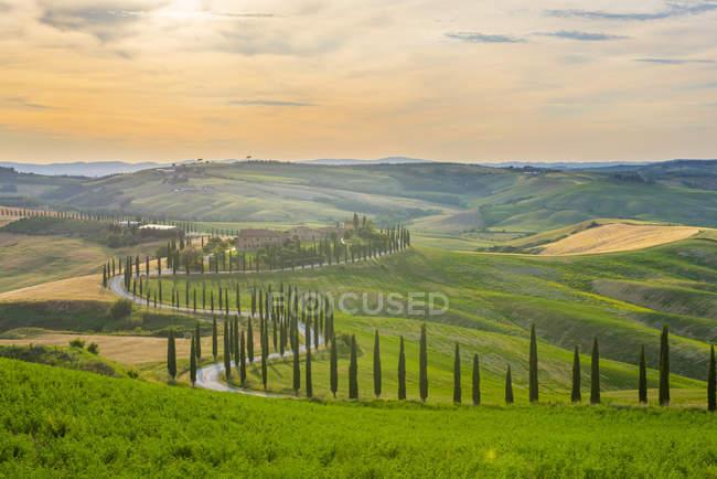 Ferme de Baccoleno, Toscane — Photo de stock