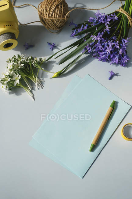 Sheets of papers with camera and flowers — Stock Photo