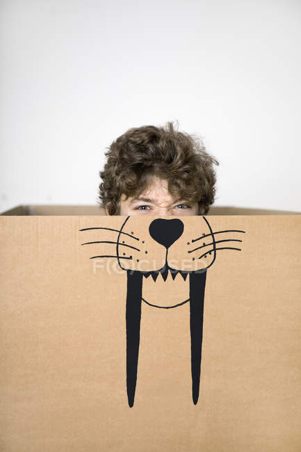 Boy inside cardboard box — Stock Photo