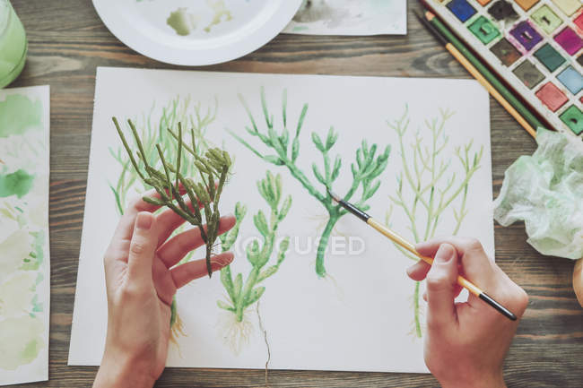 Woman painting plants — Stock Photo