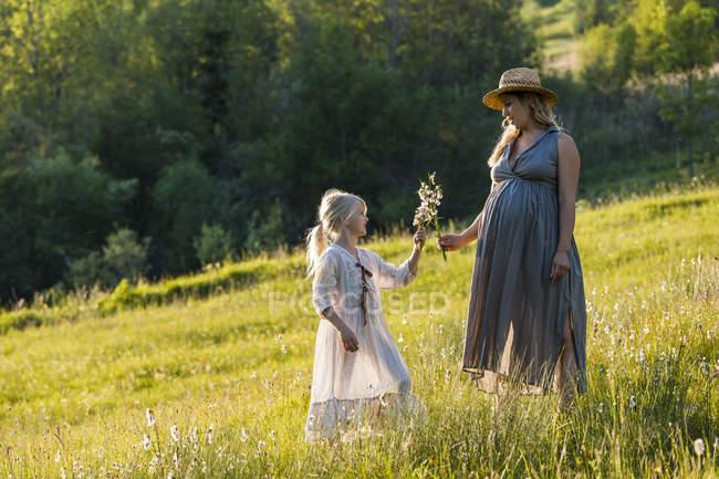 Вагітна мати і дочка на луг — стокове фото