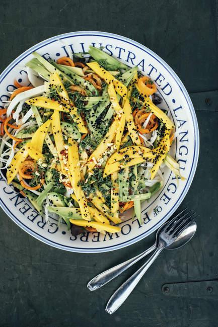 Ciotola di insalata con cavolo — Foto stock
