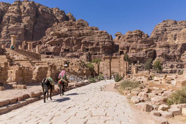 Temenos Gate, Jordan, Petra — Stock Photo