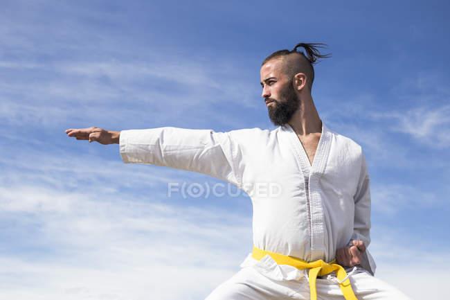 Человек, занимающийся боевыми искусствами позирует — стоковое фото