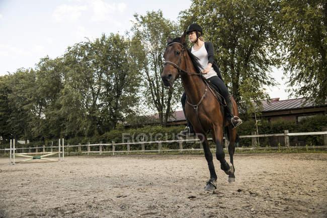 Женщина на лошади — стоковое фото