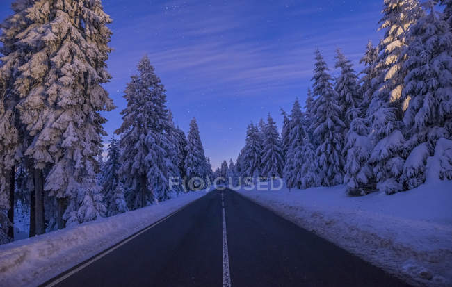 Harz National Park, Lower Saxony — Stock Photo