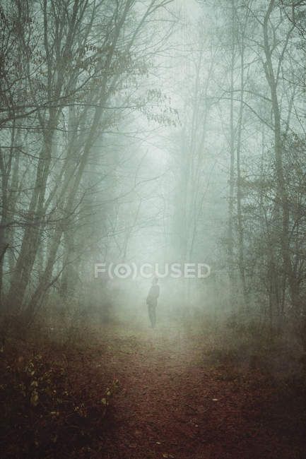 Man  standing on forest path in fog — Stock Photo