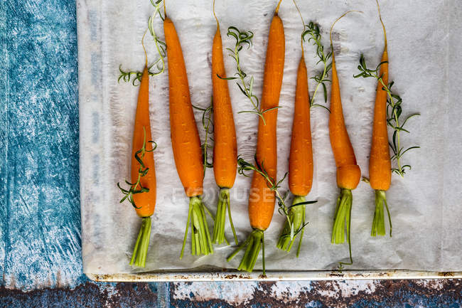 Raw carrots and fresh rosemary — Stock Photo